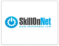 skill on net casinos