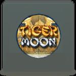 Tiger Moon slot