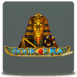 book of ra slot from novomatic