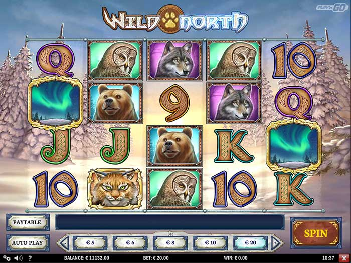 wild-north-slot-playngo