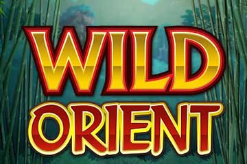 wild-orient-slot-logo