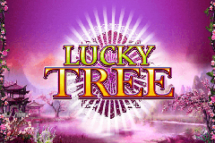 lucky-tree