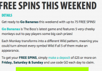 BGO Launched Go Bananas Slot With 75 Free Spin Promotion!